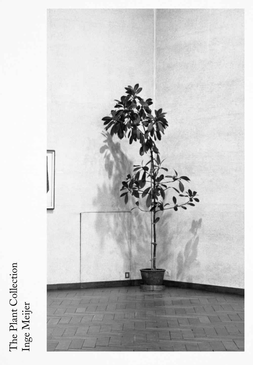 The Plant Collection door Inge Meijer