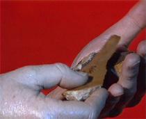 Twee witte handen, waarin twee kleine grijze en beige rivierstenen, tegen een rode achtergrond.