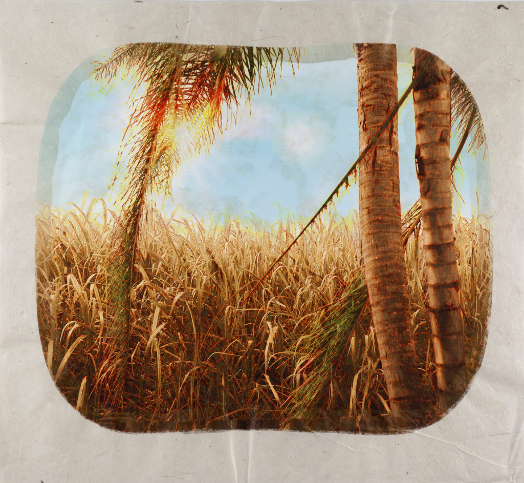 Tracey Moffatt, Plantation, 2006. Photo from a series of 12. Collection Stedelijk Museum Amsterdam, donation of Pieter en Marieke Sanders, 2014.