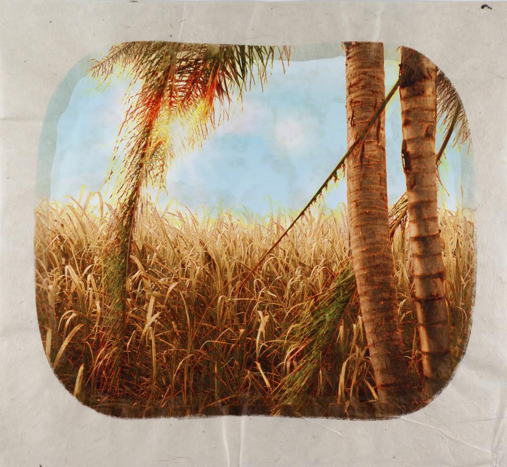Tracey Moffatt, Plantation, 2006. Foto uit een serie van 12. Collectie Stedelijk Museum Amsterdam, schenking Pieter en Marieke Sanders, 2014