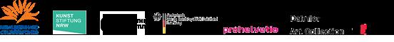 De totstandkoming van ZERO: Let Us Explore the Stars wordt mede mogelijk gemaakt dankzij de substantiële bijdrage van de begunstigers van het STEDELIJK MUSEUM FONDS en additionele steun van het Prins Bernhard  Cultuurfonds mede dankzij het Van der Vossen-Delbrück Fonds en het Straver Fonds, Kunststiftung NRW, Goethe Institut, Ambassade van de Bondsrepubliek Duitsland, IFA, Pro Helvetia, Daimler Art Collection, Borzo Gallery Amsterdam en The Mayor Gallery Londen.