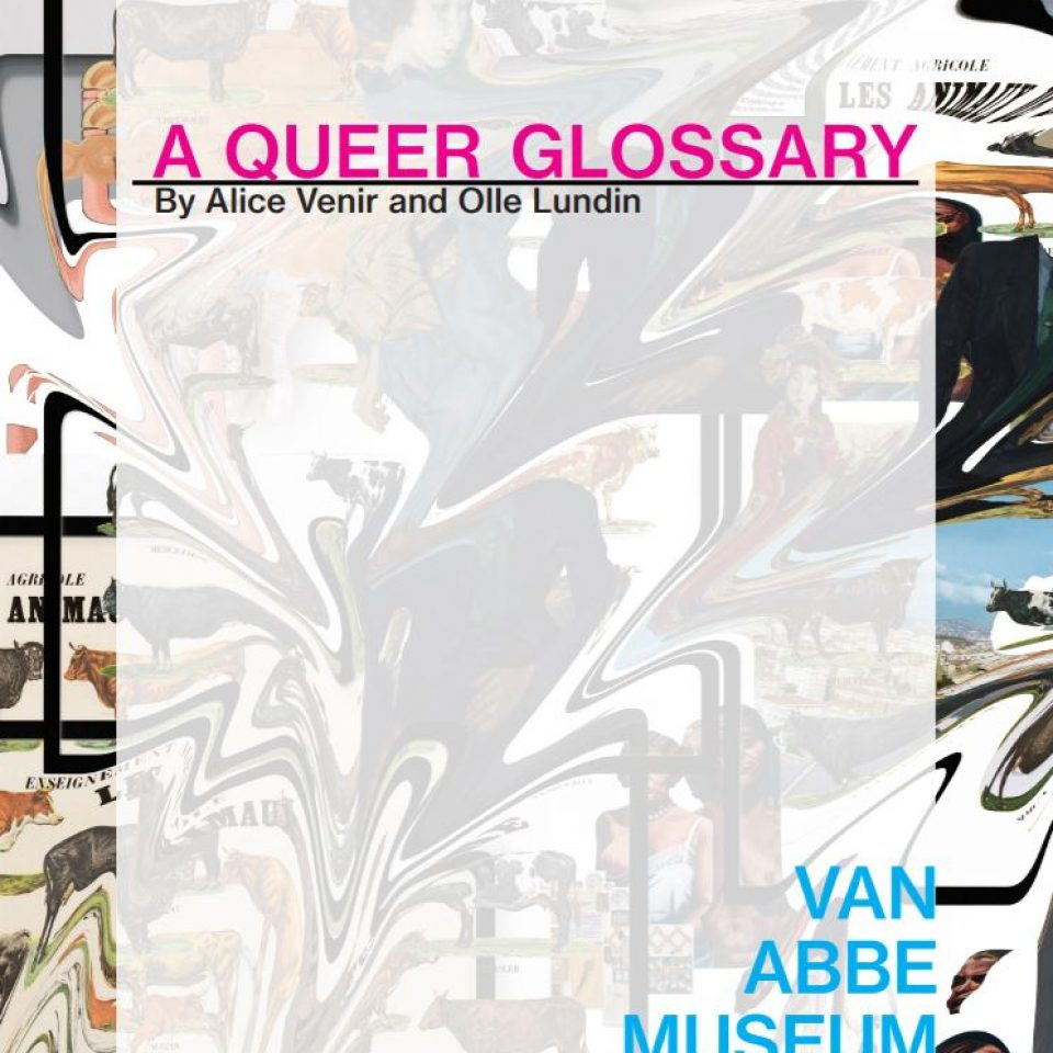 Kaft 'A Queer Glossary'
