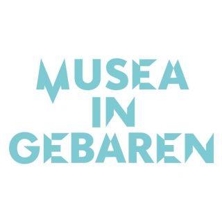 De afbeelding bevat het logo van Museum in Gebaren: 'Museum in Gebaren' in blauwe letters.