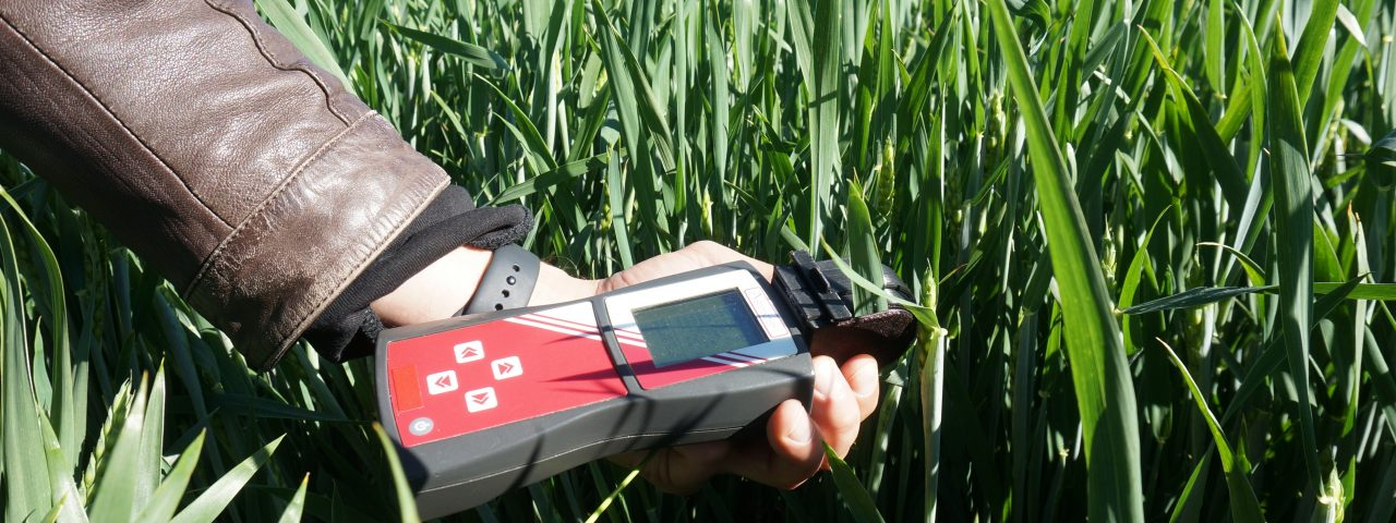 crop diagnostics
