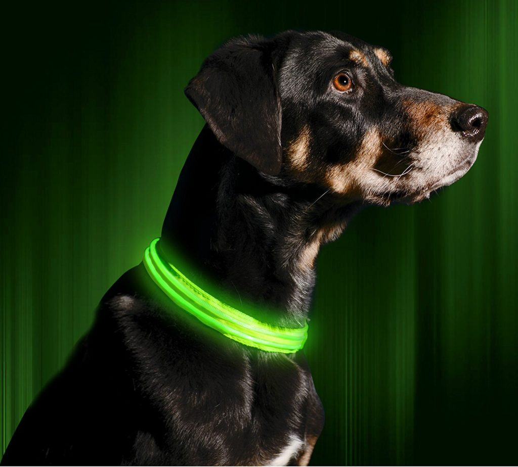 gifts for pets flashing LED collar