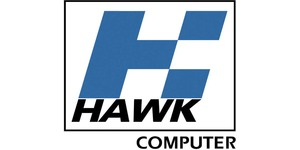 Large hawk