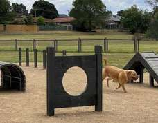 Project thumb page 7 dog park replacement pic