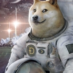Thumb avatar doge on moon