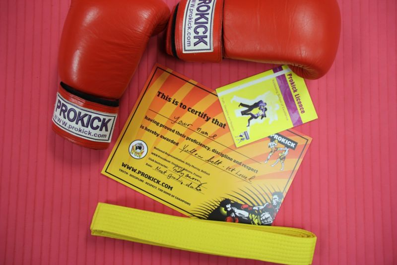 The next ProKick ADULTS Yellow & Orange Belt Grading - Saturday 1st Feb - Registration 1pm. Grading starts 1;15.pm.