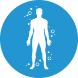 preservation of lean body mass icon