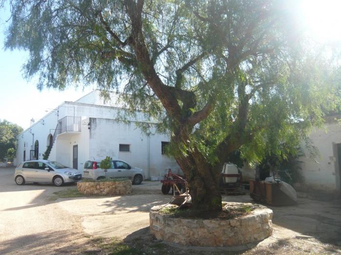 Masseria in Montalbano
