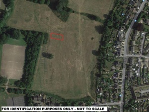 a rectangular parcel of amenity land extending to approximately 0.16 acres.