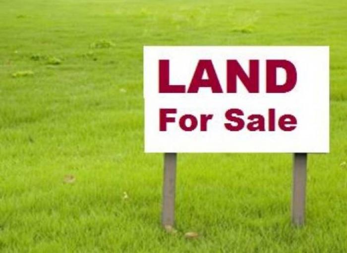 Tema Community 21 Fully Serviced Plots Of Land,