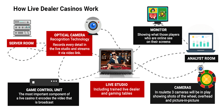 How Do Live Casino Work Infographic