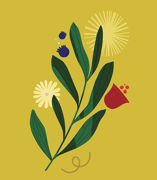 Social justice message in flower illustration by Maïa Faddoul