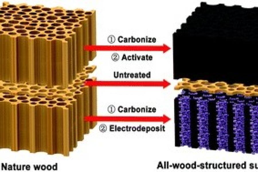 A Peek Under a Hybrid's Hood Reveals Wood?