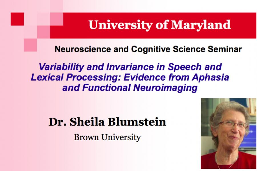 Jan. 27: Variability and Invariance in Speech and Lexical Processing: Evidence from Aphasia and Functional Neuroimaging