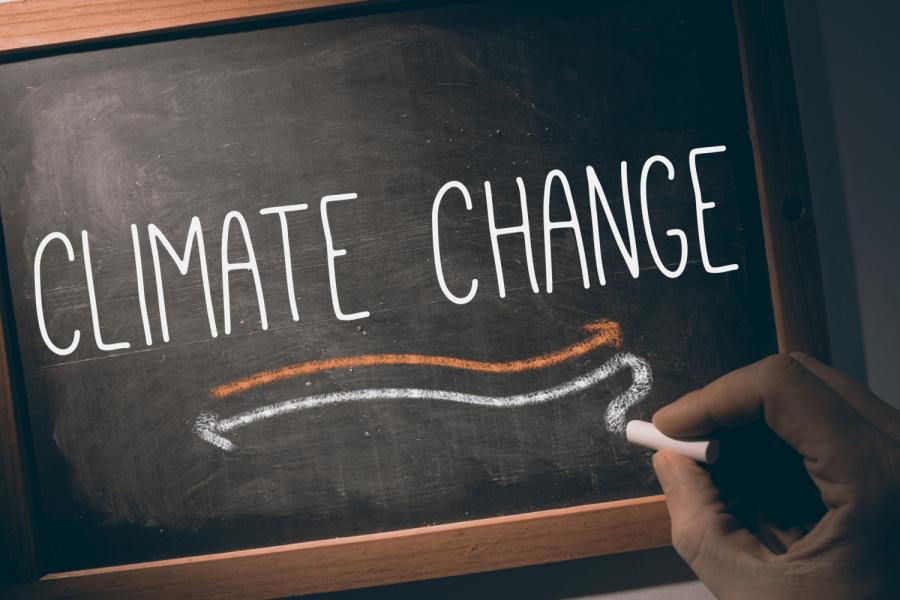 Climate Action on Campus and Beyond