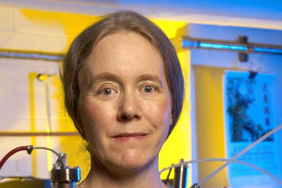 Ellen Williams Elected Foreign Member of the Royal Society