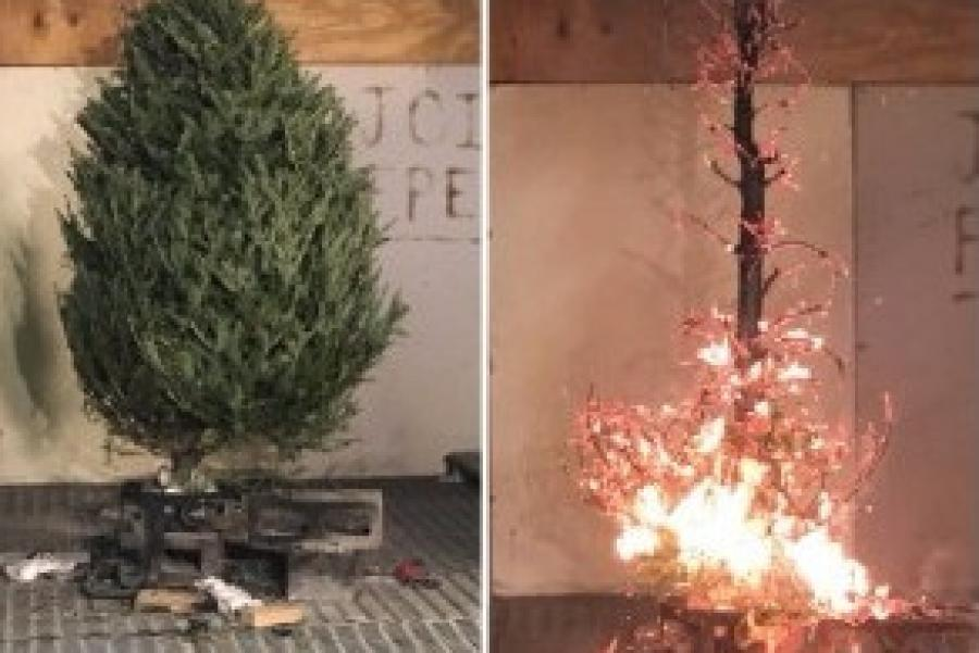 WUSA9: How to Prevent a Christmas Tree Fire In Your House