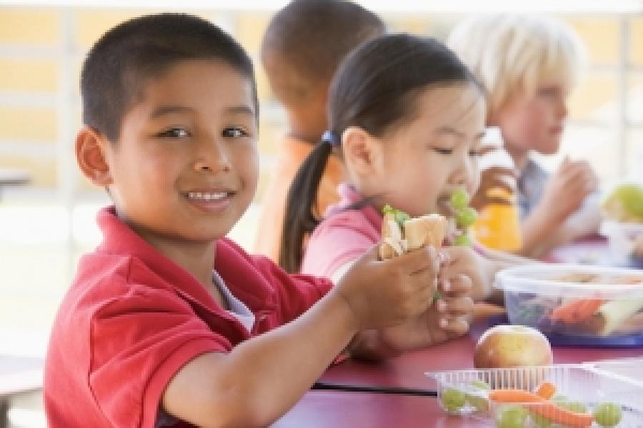 "Preventing Childhood Obesity through School-Based ""Wellness Champions"""