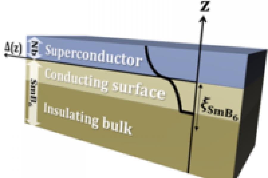 Proximity Effect Realized in Topological Kondo Insulator