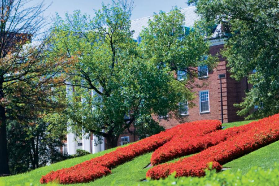 Smith Online MBA Earns Top 10 Ranking