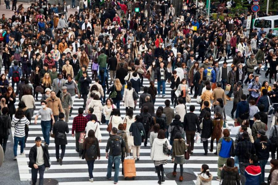 Tokyo lost and found included ¥3.7 billion in cash last year |...