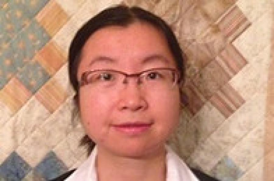 Wang Awarded APA Grant