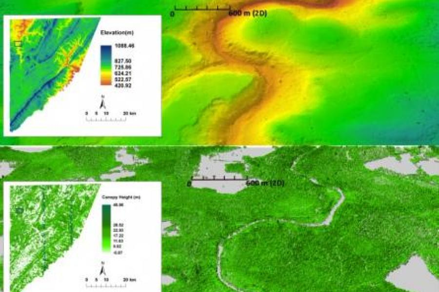 UMD Researchers Demonstrate Effectiveness of New Lidar Technology in Forest Mapping