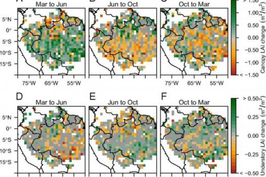 UMD Researchers Use Space Laser Technology to Explain Dry Season Growth in Amazon Rainforest