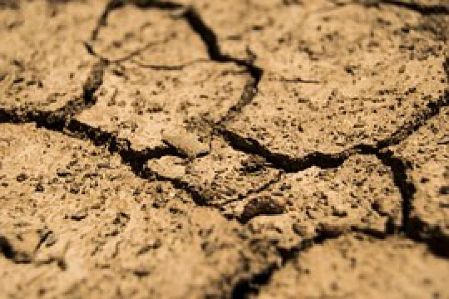 UMD Scientists Help Develop New Drought Early Warning Tool