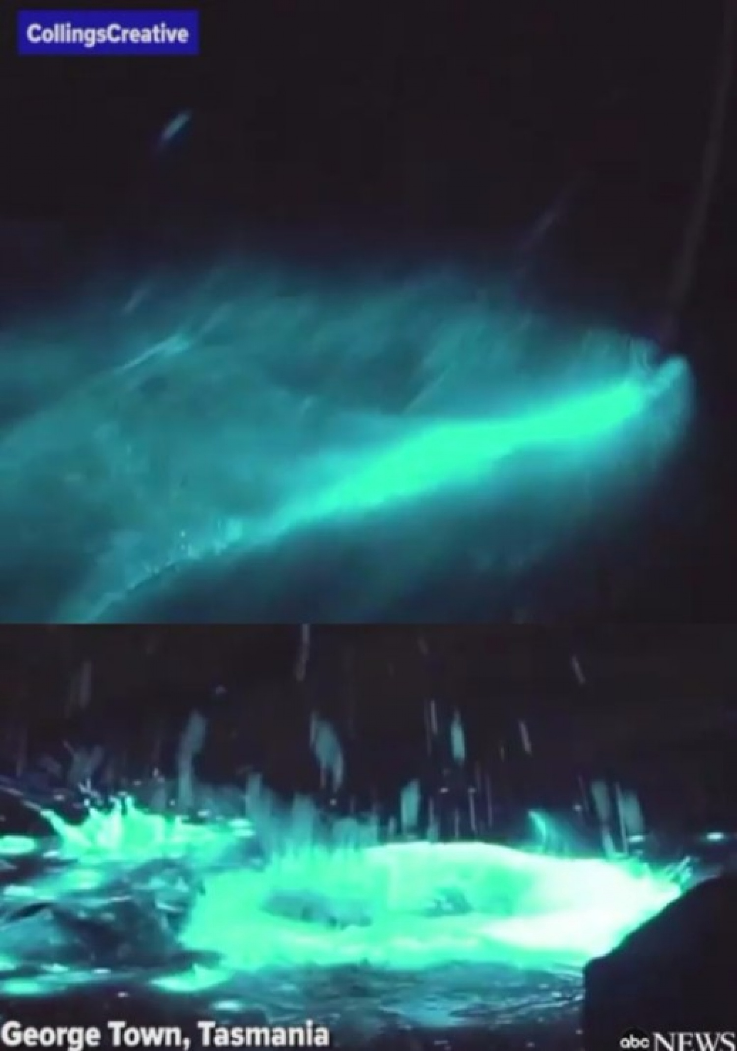 Dazzling bioluminescent event lights up the sea (video)