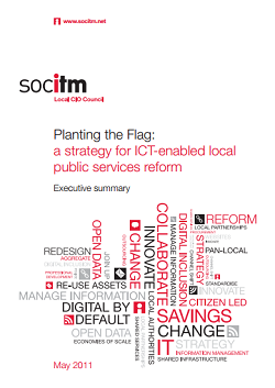Publication: Planting the Flag - Executive Summary