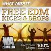 What About: Free EDM Kicks & Drops
