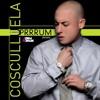 Cosculluela - Prrrum (Adrián Morales)