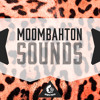 Moombahton Sounds DEMO Pack