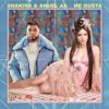 Shakira & Anuel AA - Me Gusta (Franxu Remix)