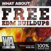 FREE EDM Buildups