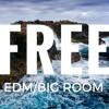 Free Professional EDM/Big Room FLP