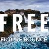 Free Future Bounce/Future House Preset Pack (Bro