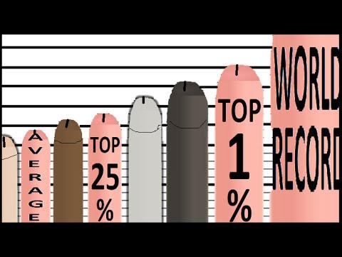 About penis size comparison chart charming question
