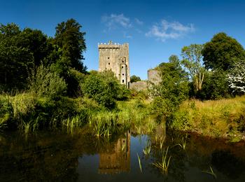 Tour di quattro giorni al sud ovest dell'Irlanda (Galway, Scogliere di Moher, Kerry, Dingle e Blarney)