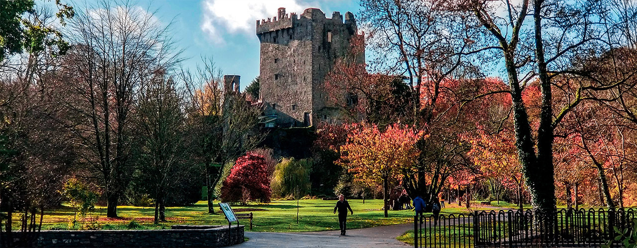 Blarney Castle Tour from Dublin