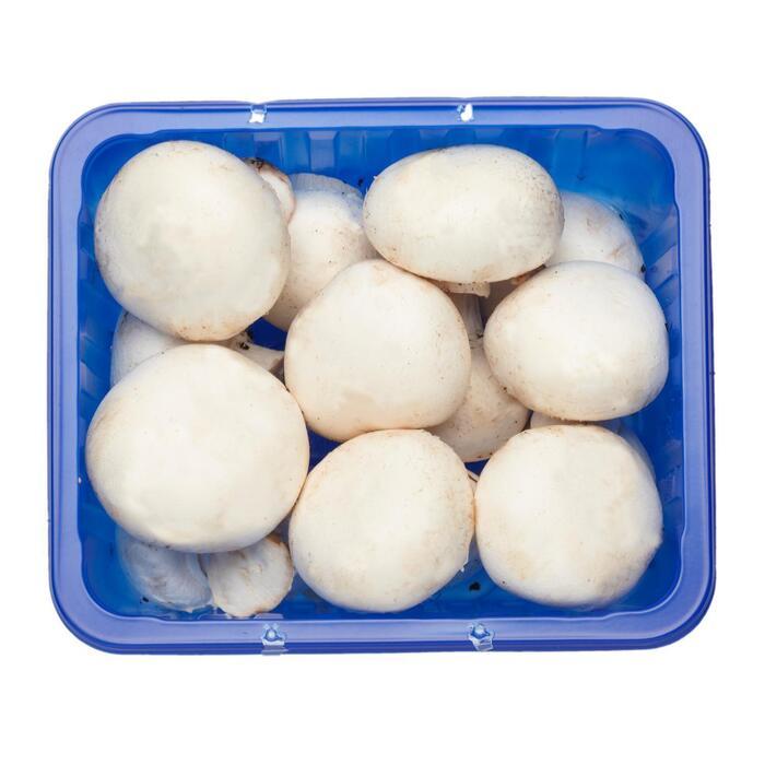 champignons fijn 250gr (250g)