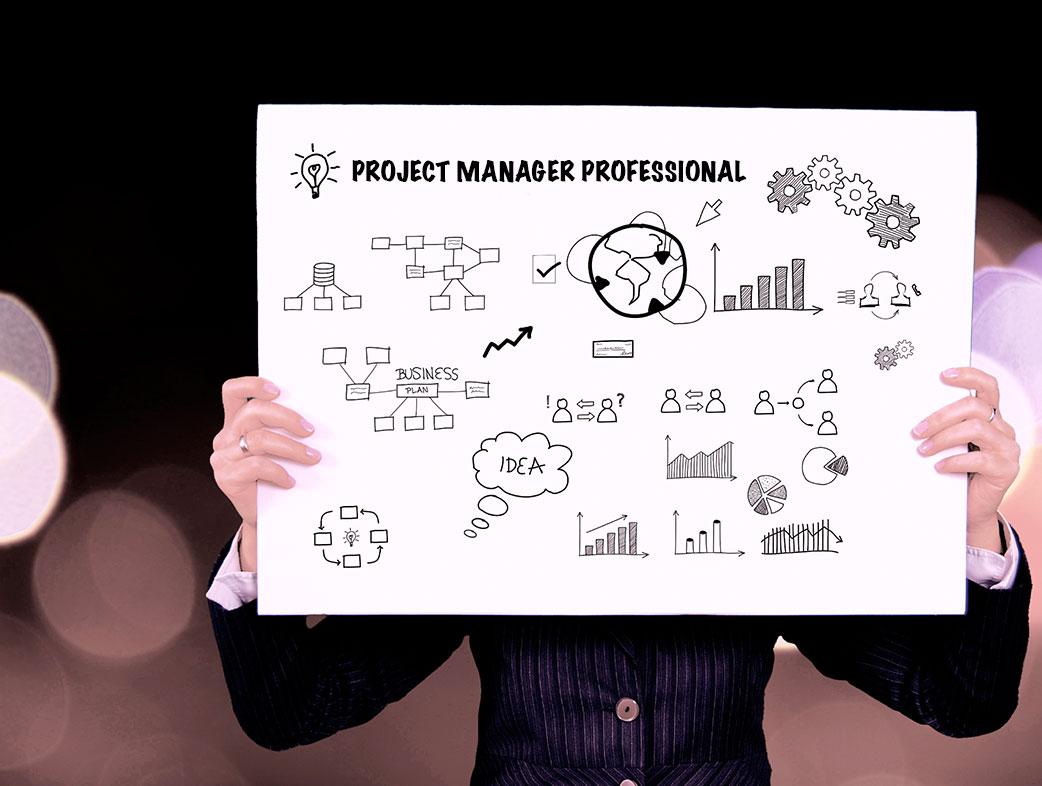 Conjunto de capacidades que tiene un project management professional