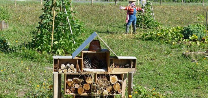 La permaculture connait une popularité croissante, mais il y a plusieurs problèmes, notamment le manque cruel d'études scientifiques sur le sujet et l'esclavage moderne qui en découle par des concepts tels que le WWOOFing.