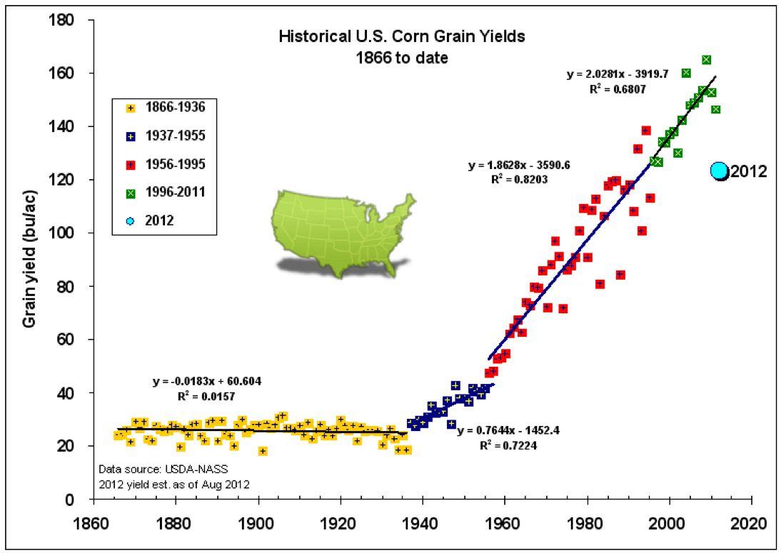 L'augmentation du rendement concernant le maïs avec la génétique