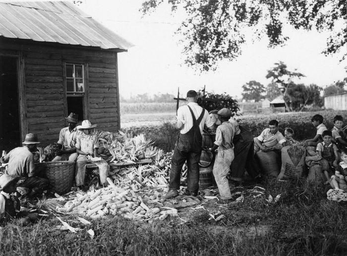 Ferme américaine de maïs dans les années 1930