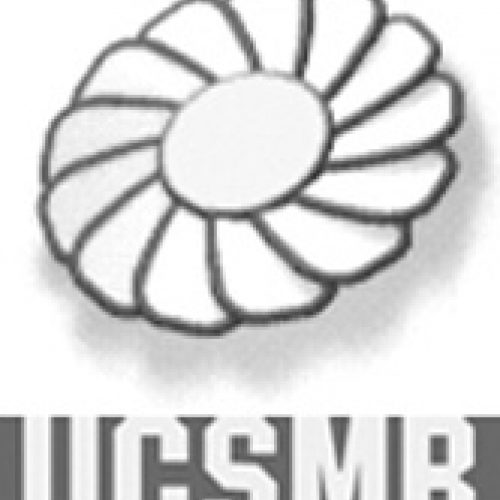 1995 soldiers mothers logo 166x221